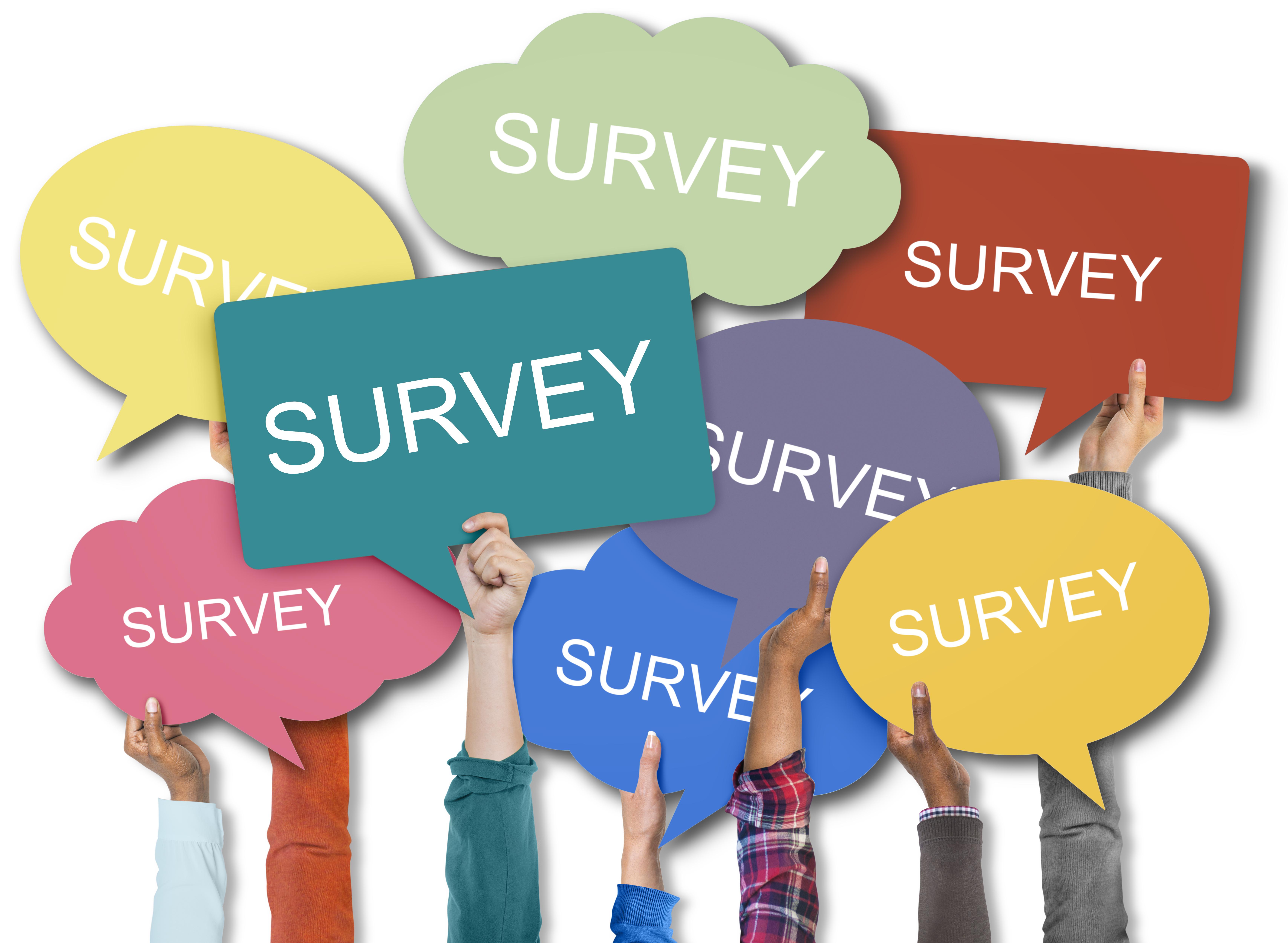 DEI Survey